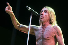 Iggy Pop Photographie stock libre de droits