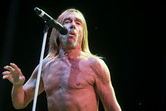 Iggy Pop Image stock