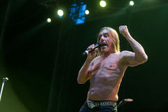 Iggy Pop Photos libres de droits