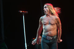 Iggy Pop Photo libre de droits