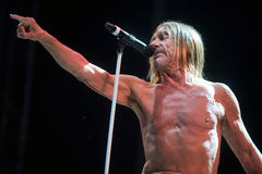 Iggy Pop Photo stock