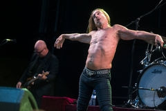 Iggy Pop Images stock