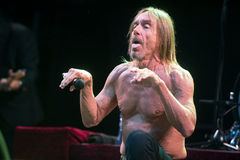 Iggy Pop Fotografie Stock
