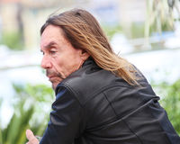Iggy Pop attends the `Gimme Danger` Stock Photography