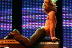IGGY POP CONCERT Royalty Free Stock Photography