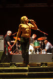 Iggy and The Stooges Live at Peninsula Festival Royalty Free Stock Photos