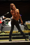 Iggy and The Stooges Live at Peninsula Festival Stock Images