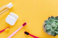 Igiene dentale - spazzolini da denti, filo per i denti, disposizione piana del colluttorio, vista superiore, spazio della copia,  immagine stock