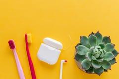 Igiene dentale - spazzolini da denti, filo per i denti, disposizione piana del colluttorio, vista superiore, spazio della copia,  fotografie stock