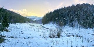 iglaści lasowi gór drogi drewna Fotografia Stock