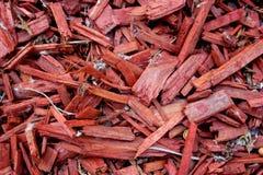 Iglasty jaskrawy czerwony trociny jako trocinowy tekstury tło Zdjęcia Royalty Free