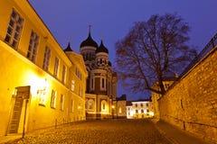 Iglesia de Alexander Nevsky en Tallinn en la noche Imagenes de archivo