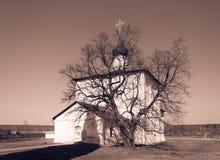 Iglesia de Boris y de Gleb detrás del árbol Imagen de archivo libre de regalías