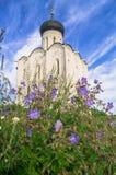 Iglesia de la intercesión de la Virgen Santa en el río de Nerl en el día de verano brillante Imagen de archivo libre de regalías