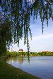 Iglesia del dong de Khoai Imagen de archivo libre de regalías
