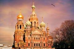 Iglesia del salvador en la sangre Spilled o catedral de la resurrección de Cristo en la puesta del sol, St Petersburg fotografía de archivo