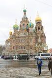 Iglesia del salvador en sangre derramada, St Petersburg, Rusia Fotografía de archivo libre de regalías