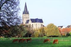 Iglesia del St Michael Church en Países Bajos Foto de archivo