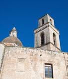 Iglesia del St. Vicente. Monopoli. Apulia. fotos de archivo libres de regalías