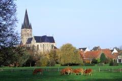 Iglesia en el centro de pueblos en Países Bajos Fotos de archivo