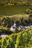 Iglesia en viñedos en el valle de Mosela Imagenes de archivo