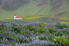 Iglesia en Vik, Islandia Imágenes de archivo libres de regalías