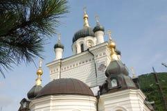 Iglesia ortodoxa y árbol de pino en d3ia fotografía de archivo