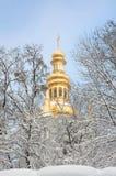 Iglesia ortodoxa y los árboles nevados. Imágenes de archivo libres de regalías