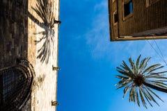 Iglesia, palacio y una palmera en Barcelona Fotografía de archivo