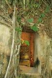 Iglesia tailandesa rodeada por las raíces del árbol Fotos de archivo