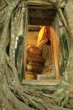 Iglesia tailandesa rodeada por las raíces del árbol Foto de archivo libre de regalías