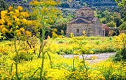 Iglesia a través de las flores amarillas, Chipre de Lefkara Fotos de archivo libres de regalías