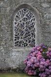 Iglesia vieja con la ventana y la planta de la hortensia Foto de archivo libre de regalías