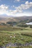Iglesia vieja de Dunlewy en el campo hermoso de Donegal Fotografía de archivo libre de regalías