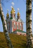 Iglesia y abedul del monasterio de Novodevichy Fotos de archivo libres de regalías