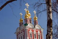 Iglesia y abedul del monasterio de Novodevichy Imagen de archivo libre de regalías
