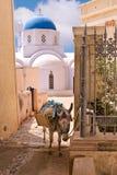 Iglesia y burro de Santorini Grecia usados para acarrear equipaje a los hoteles Imagenes de archivo