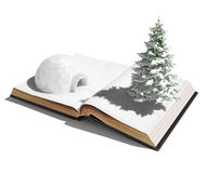 Igloo on the open book. 3d concept royalty free illustration