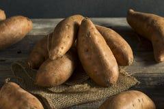 Ignames organiques oranges crues de patate douce images stock