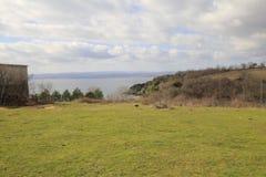 Free Igneada Coast, From North Of Turkey. Stock Photo - 160034580