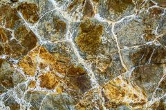 Igneous rock lava closeup. Stock Image