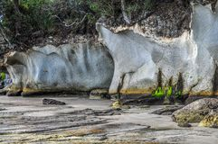 Ignimbrite cliffs in New Zealand Stock Photo