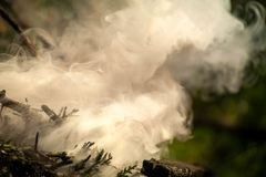 Ignite the fire. Macro shot of bonfire, white smoke, hot, glowing coal and fire. Stock Images