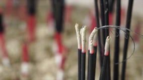 Ignite incense stock video