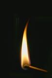 Ignited match. A single flame on a match stick Stock Image