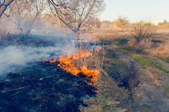 Ignition of dry grass. Fire danger. Ignition of dry grass. Fire danger Stock Photos