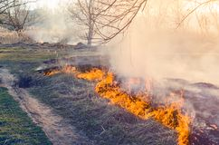 Ignition of dry grass. Fire danger. Ignition of dry grass. Fire danger Stock Photography