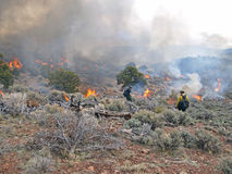 Ignition. Wildland fire fighters use prescribed fire to manage rangeland vegetation Stock Photo