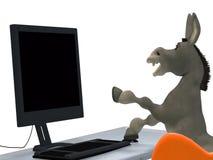 Ignorant donkey Royalty Free Stock Image