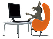Ignorant donkey learning computer Royalty Free Stock Photo